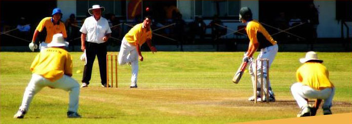 Goldfield ashes Cricket